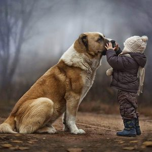 Dogs & Humans: The Bond Between Them