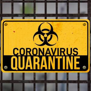 Personality Quiz: What popular quarantine activity are you?